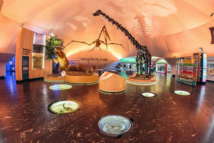 El Museo de Historia Natural y Cultura Ambiental abre sus puertas