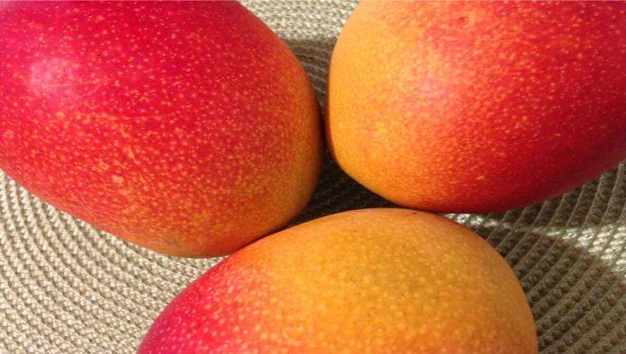 5 postres con mango