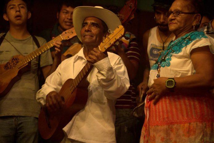 Encuentro de son jarocho y son huasteco en Veracruz será online