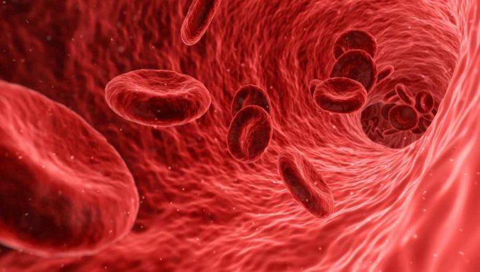 Anticuerpos contra COVID-19 duran cuatro meses: estudio