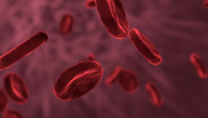 La terapia celular y la terapia génica son la medicina del futuro