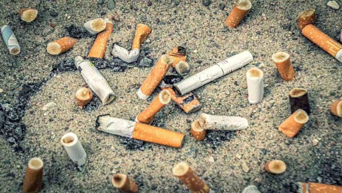 Proponen prohibir cigarros en playas por contaminación de colillas