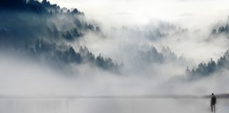 La neblina metal. Secuela de la Covid-19