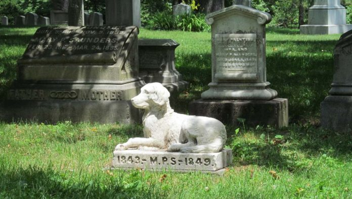 Duelo por la muerte de una mascota