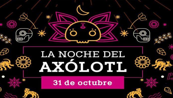 Vive la Noche del Axólotl en Axolotitlán
