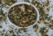 Ayahuasca, el té amazónico que podría curar trastornos psiquiátricos