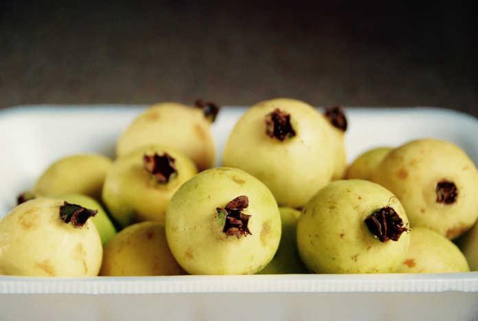 Guayaba, la fruta que vence a las enfermedades respiratorias