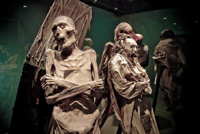 Momias de Guanajuato, víctimas de una pandemia
