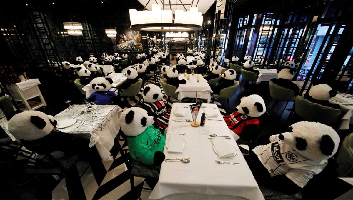 Restaurante protesta con osos panda de peluche