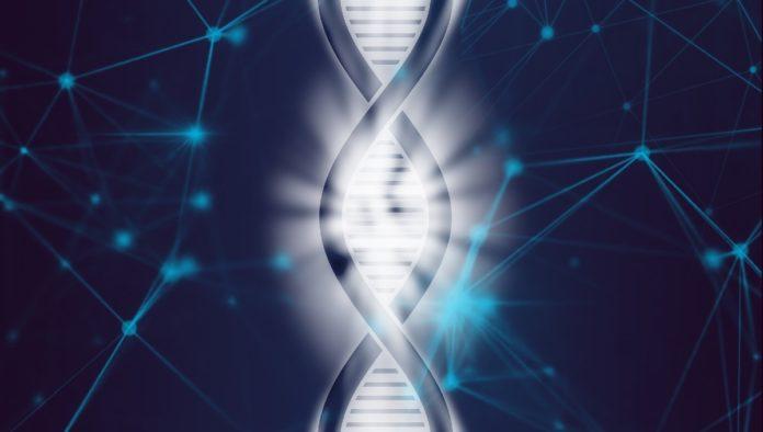 reloj epigenético