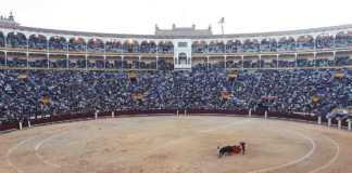 UNESCO descarta la tauromaquia como patrimonio cultural de la humanidad