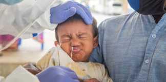COVID-19 podría llegar al cerebro a través de la nariz: estudio