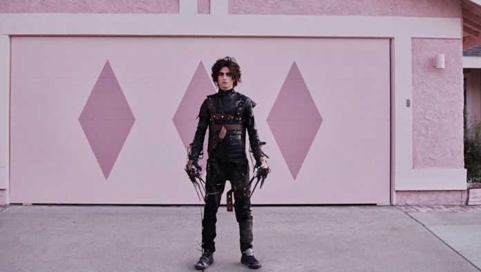 Timothée Chalamet interpreta al hijo del 'joven manos de tijeras' en emotivo comercial con Winona Ryder