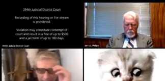 Video de abogado con filtro con gato