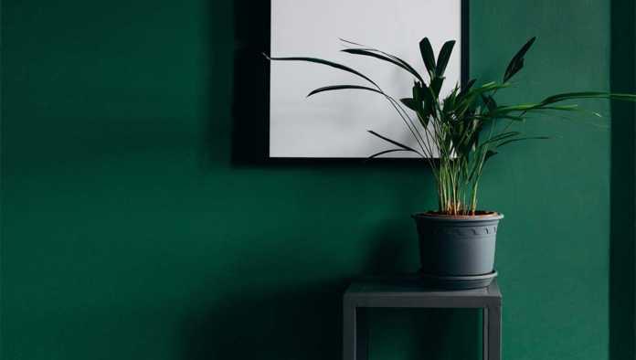 Ideas para un hogar primaveral
