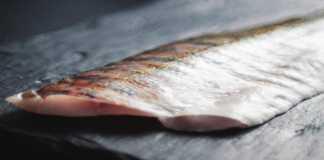Carne de pescados