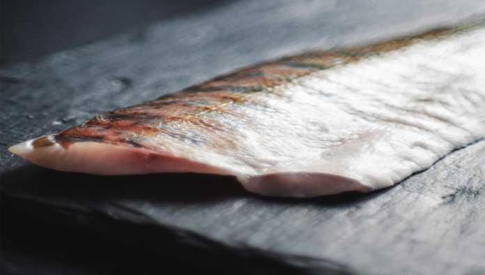 El 44% de los pescados que se venden en México son un engaño: Oceana