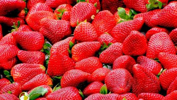 Ahorra comprando las frutas y verduras de esta temporada