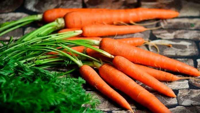 Únete al lunes sin carne con esta receta de tinga de zanahoria