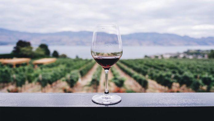 Copa de vino tinto