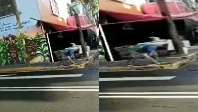 Taquero lava trapo en la calle