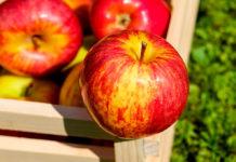 manzanas con chamoy
