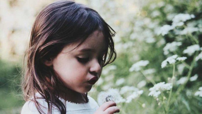 Plantas y niños