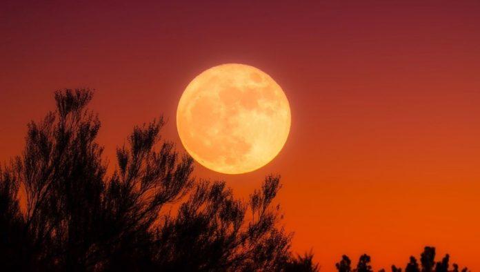 Ritual para atraer la buena energía de la Luna de Maíz