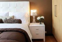 Plantas que deberías colocar en tu habitación para dormir mejor