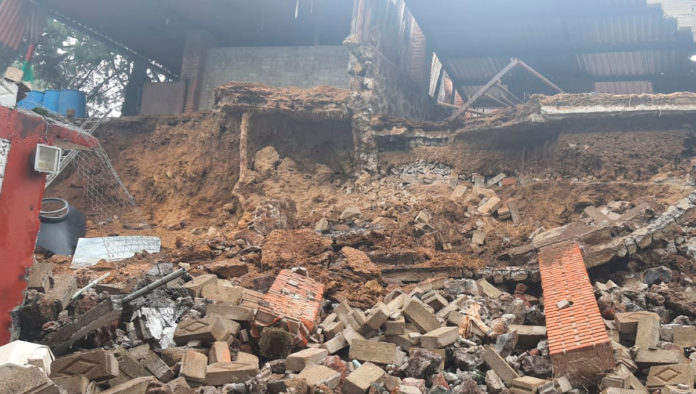 Se derrumba refugio de perros en Xochimilco; abren donaciones para apoyar