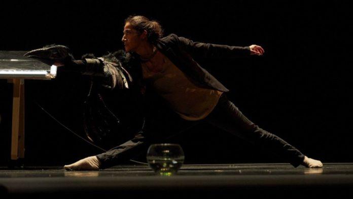 """""""Sinapsis"""", la pieza de danza sobre el valor de la equidad para alcanzar la libertad"""